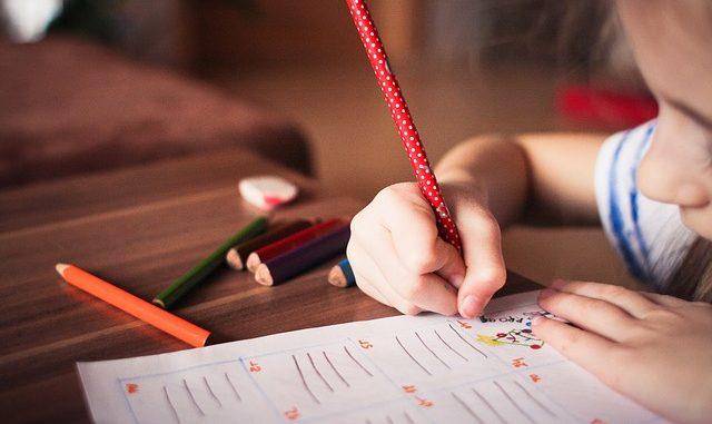 Langkah Untuk Membuat Anak Jadi Cerdas Yang Perlu Diketahui