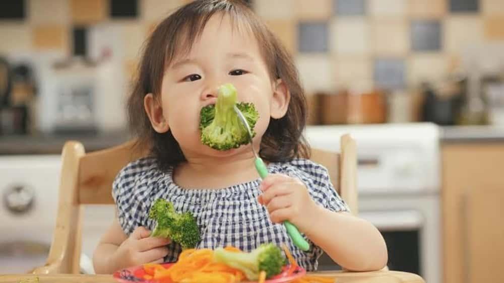 Ini Dia Usia Tepat Untuk Anak Belajar Makan Sendiri