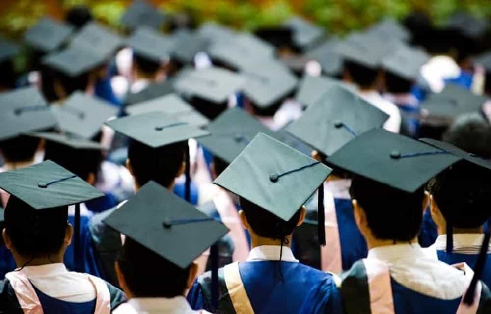 4 Jenis Pekerjaan Ini Bisa Dicoba Bagi Kamu yang Baru Lulus Kuliah