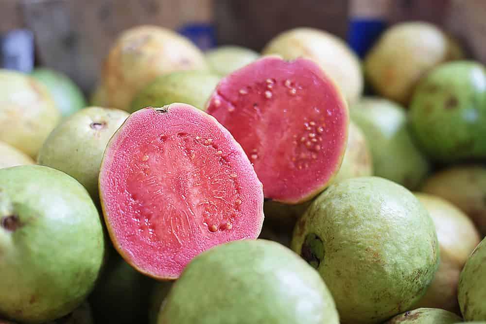 Menangkal Penyakit di Musim Hujan Dengan Mengonsumsi Jambu Biji, Buah yang Kaya akan Vitamin C