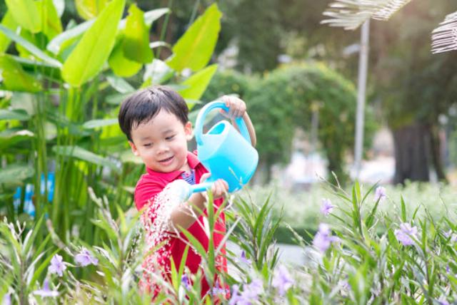 4 Manfaat Mengajari Anak Untuk Peduli Lingkungan Sejak Kecil