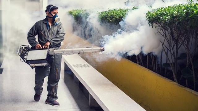 Selain Pandemi, DBD Juga Mengintai. Berikut 6 Cara Mencegah yang Efektif