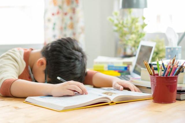 Belajar Dari Rumah Bisa Pengaruhi Perkembangan Kognitif Anak. Ini Penjelasannya