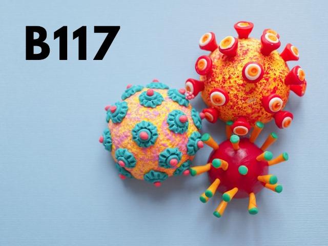 Varian Covid-19: Bisakah Dilawan Oleh Vaksin yang Ada di Indonesia?