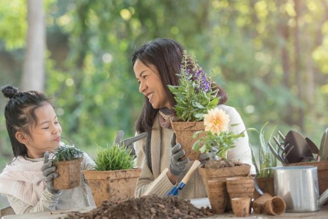 Berkebun Bareng Keluarga Punya Banyak Manfaat, Apa Saja?